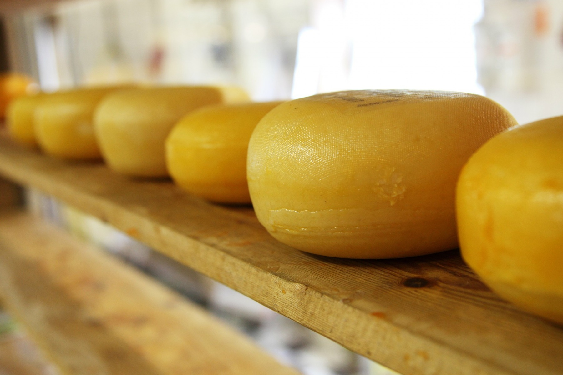 cheese-2785_1920