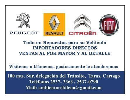 Amarillas-CR-Repuestos-Peugeot-Renault-Fiat-y-Citroen-3