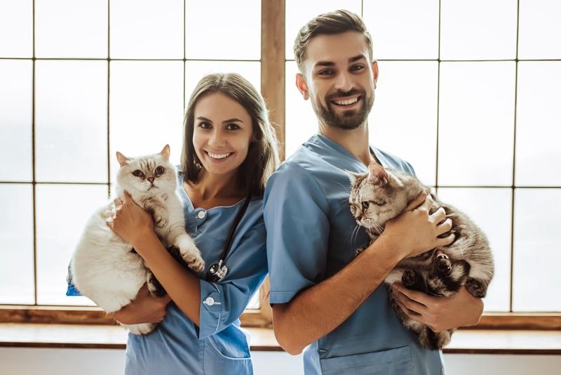 Día-mundial-veterinario_shutterstock_760342405